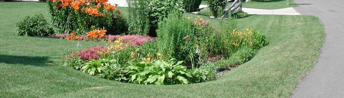 Overvannshåndering har skapt vannbad i hage med
